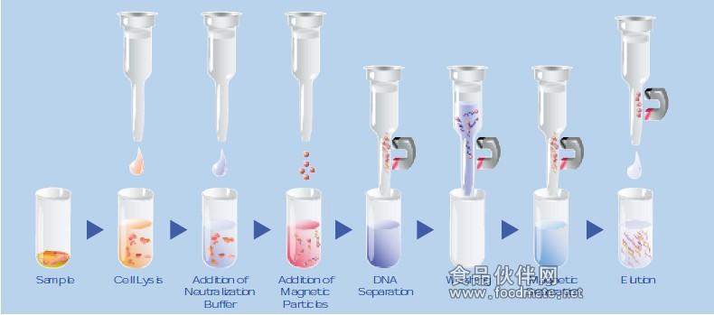 血液等样本的dna/rna提取