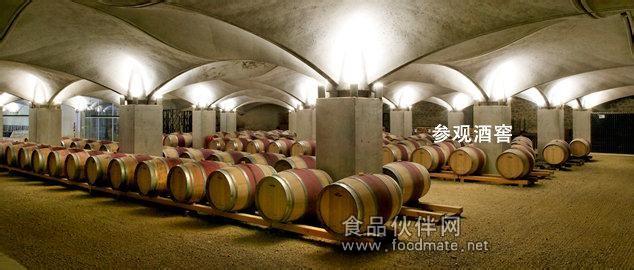 法国进口红酒 2011奥姆纳干红葡萄酒
