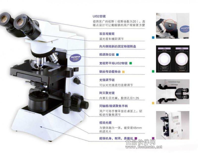 微生物实验室 显微镜