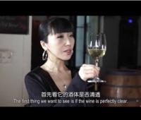 《葡萄酒鉴赏家》第三季第三集:意大利葡萄酒品酒会