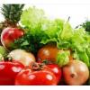 食品农产品检测服务