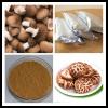 香菇多糖 纯天然香菇提取物